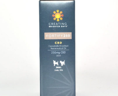 Fortify 250mg CBD Tincture for Pets