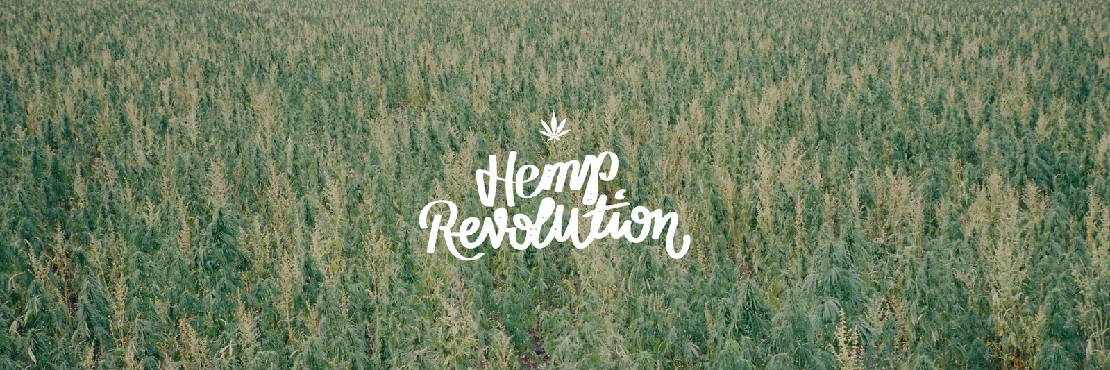 c262d87b0e Such archaic views of marijuana are on the decline, and pretty soon both  hemp and cannabis will be grown to their full potential. We here at Shop  CBD Online ...